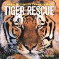 Tiger Rescue Changing the Future for Endangered Wildlife