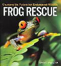 Frog Rescue Changing The Future For Endangered Wildlife