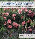 Climbing Gardens Adding Height and Structure to Your Garden