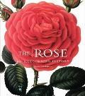Rose An Illustrated History