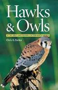 Hawks & Owls of the Great Lakes Region and Eastern North America