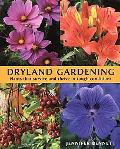 Dryland Gardening Plants That Survive And Thrive In Tough Conditions