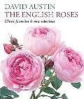 English Roses: Classic Favorites and New Selections