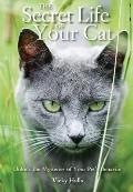 Secret Life of Your Cat : Unlock the Mysteries of Your Pet's Behavior