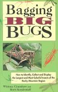 Bagging Big Bugs How to Identify, Collect and Display the Largest and Most Colorful Insects ...