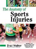 Anatomy of Sports Injuries