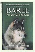 Baree The Wolf Dog