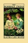 Bobbsey Twins Visit to the Great West