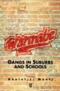 Wannabe Gangs in Suburbs and Schools and Schools