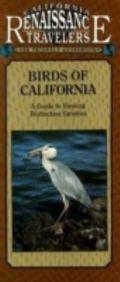 California Traveler Birds of California A Guide to Viewing Distinct Varieties