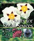 Horticulture Gardener's Guides Plants For Small Spaces
