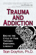 Trauma and Addiction Ending the Cycyle of Pain Through Emotional Literacy