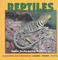 Reptiles Explore the Fascinating Worlds Of--Alligators and Crocodiles, Lizards, Snakes, Turtles