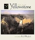 Yellowstone Wild & Beautiful
