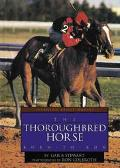 Thoroughbred Horse Born to Run