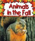 Animals in the Fall, Vol. 3
