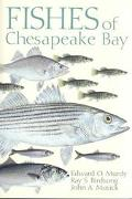 Fishes of Chesapeake Bay
