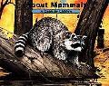 About Mammals A Guide for Children