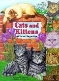 Cats and Kittens - Marc Gave - Board Book