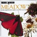 Meadow: Look Closer