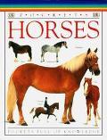 DK Pockets: Horses