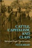 Cattle, Capitalism, Class: Ilparakuyo Maasai Transformations