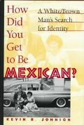 How Did You Get to Be Mexican? A White/Brown Man's Search for Identity