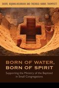 Born of Water, Born of Spirit : Supporting the Ministry of the Baptized in Small Congregations