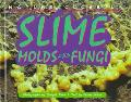 Slime Molds and Fungi