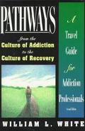 Pathways From the Culture of Addiction to the Culture of Recovery  A Travel Guide for Addict...