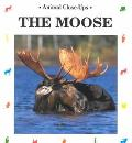 Moose Gentle Giant