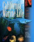 California Marine Life A Guide to Marine Species