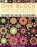 One-Block Wonders One Fabric, One Shape, One-of-a-kind Quilts