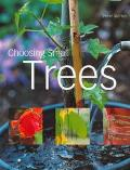 Choosing Small Trees