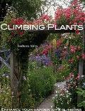 Choosing and Using Climbing Plants