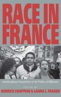 Race in France Interdisciplinary Perspectives on the Politics of Difference