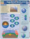 Marine Biology Our Precious Oceans