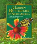 Garden Butterflies of North America A Gallery of Garden Butterflies & How to Attract Them