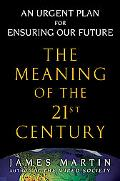 Meaning of the 21st Century A Vital Blueprint For Ensuring Our Future