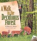 Walk in the Deciduous Forest