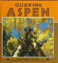 Quaking Aspens