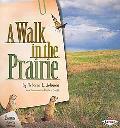 A Walk in the Prairie (Biomes of North America)