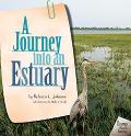 Journey into an Estuary