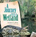 Journey into a Wetland