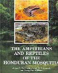 Amphibians and Reptiles of the Honduran Mosquitia