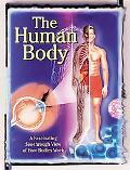 Human Body A Fascinating See-Through View of How Bodies Work