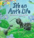It's an Ant's Life - Steve Parker - Hardcover