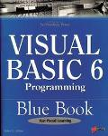 Visual Basic 6 Programming Explorer