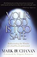 Your God Is Too Safe Rediscovering the Wonder of a God You Can't Control