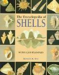 Encyclopedia of Shells - Kenneth R. Wye - Hardcover